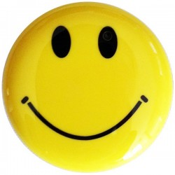 Smiley camera broche